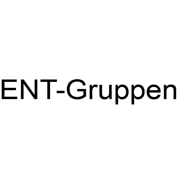 ENT-Gruppen